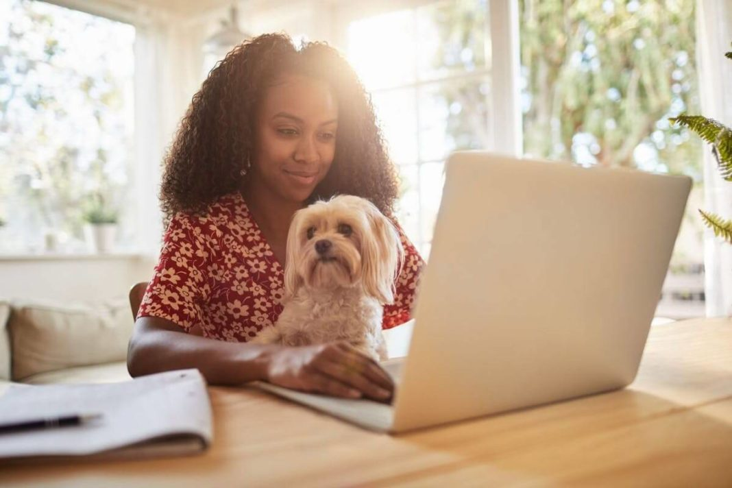 stay Cool when Home-working in a Heat Wave