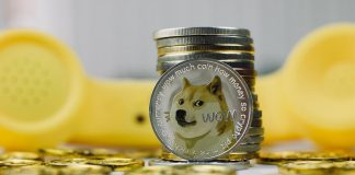 Increasing popularity of the Dogecoin